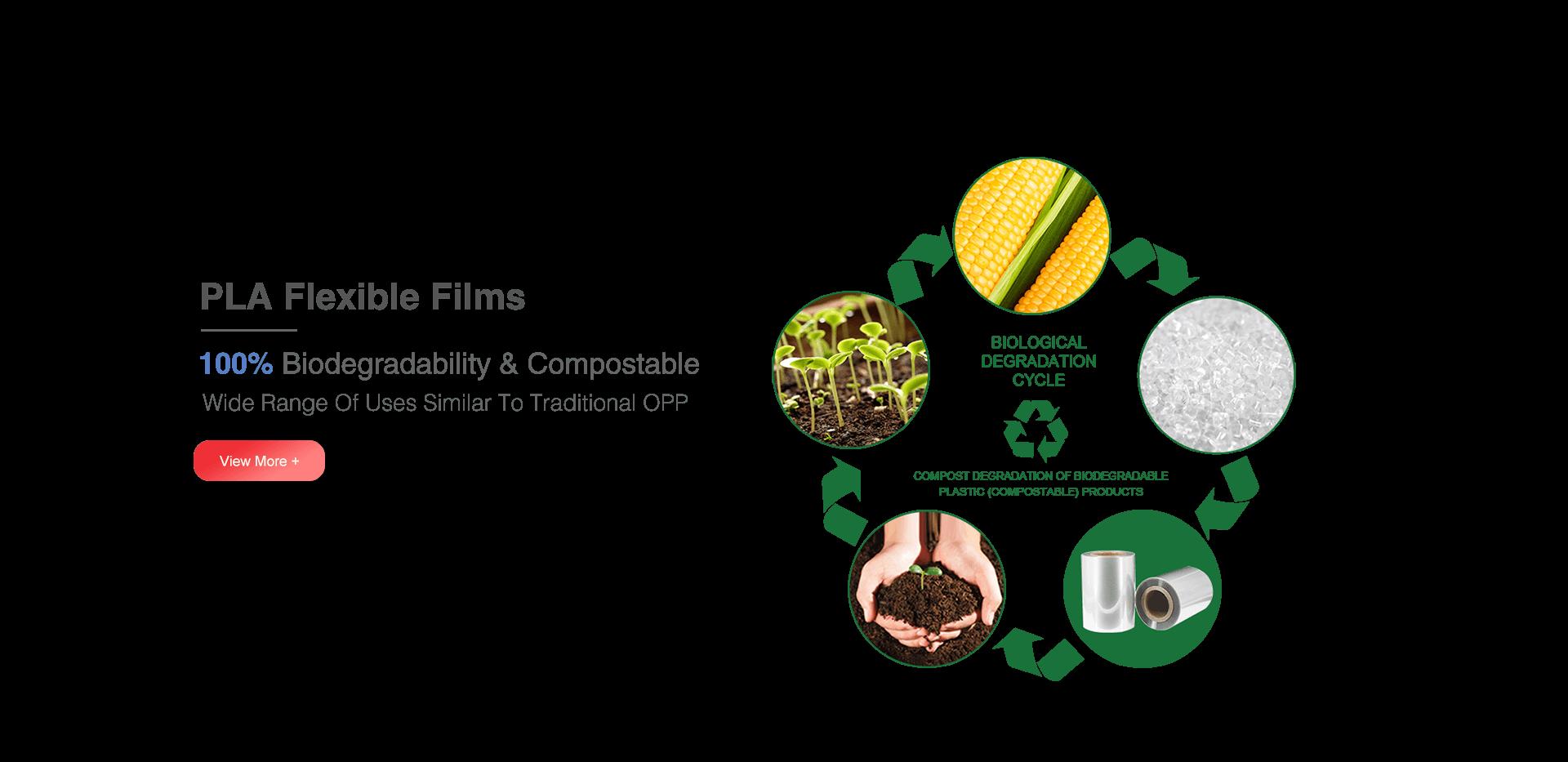 PLA Flexible Films